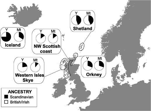 Både nordmenner, irar og skottar hev sett sine spor på Shetland, Hjaltland og Orknøyane.