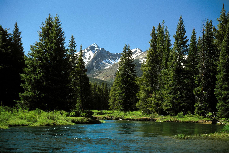 """""""Upp mot ørkenen set me skogen: Vår eigi verd med kjeldor, elvar, fjell. Me må skapa noko for å kunna fylla tomromet, me må veksa oss upp motbakken."""""""